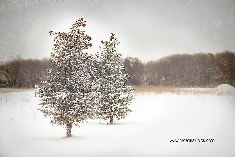 winter_wonderland_-22-blog