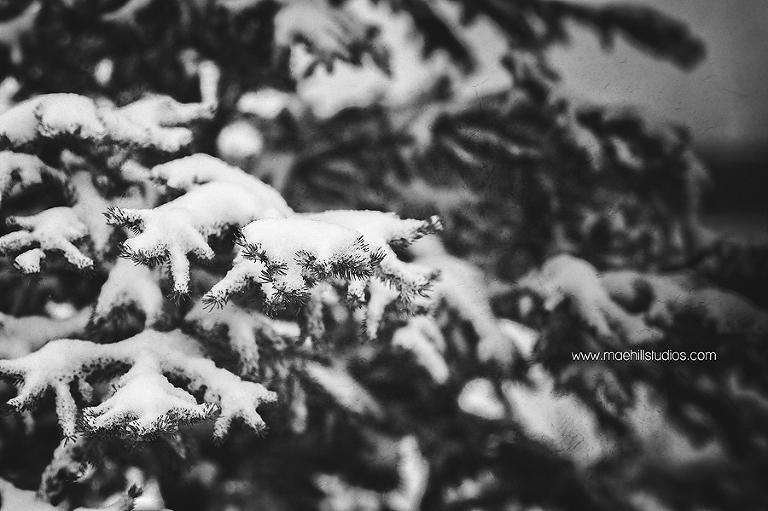 winter_wonderland_blog-14
